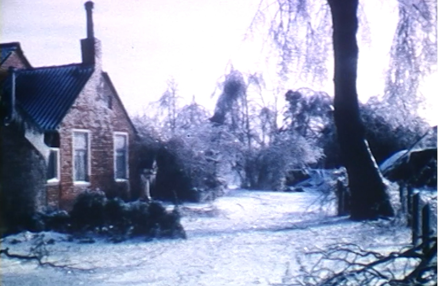 'Winter in Drenthe'